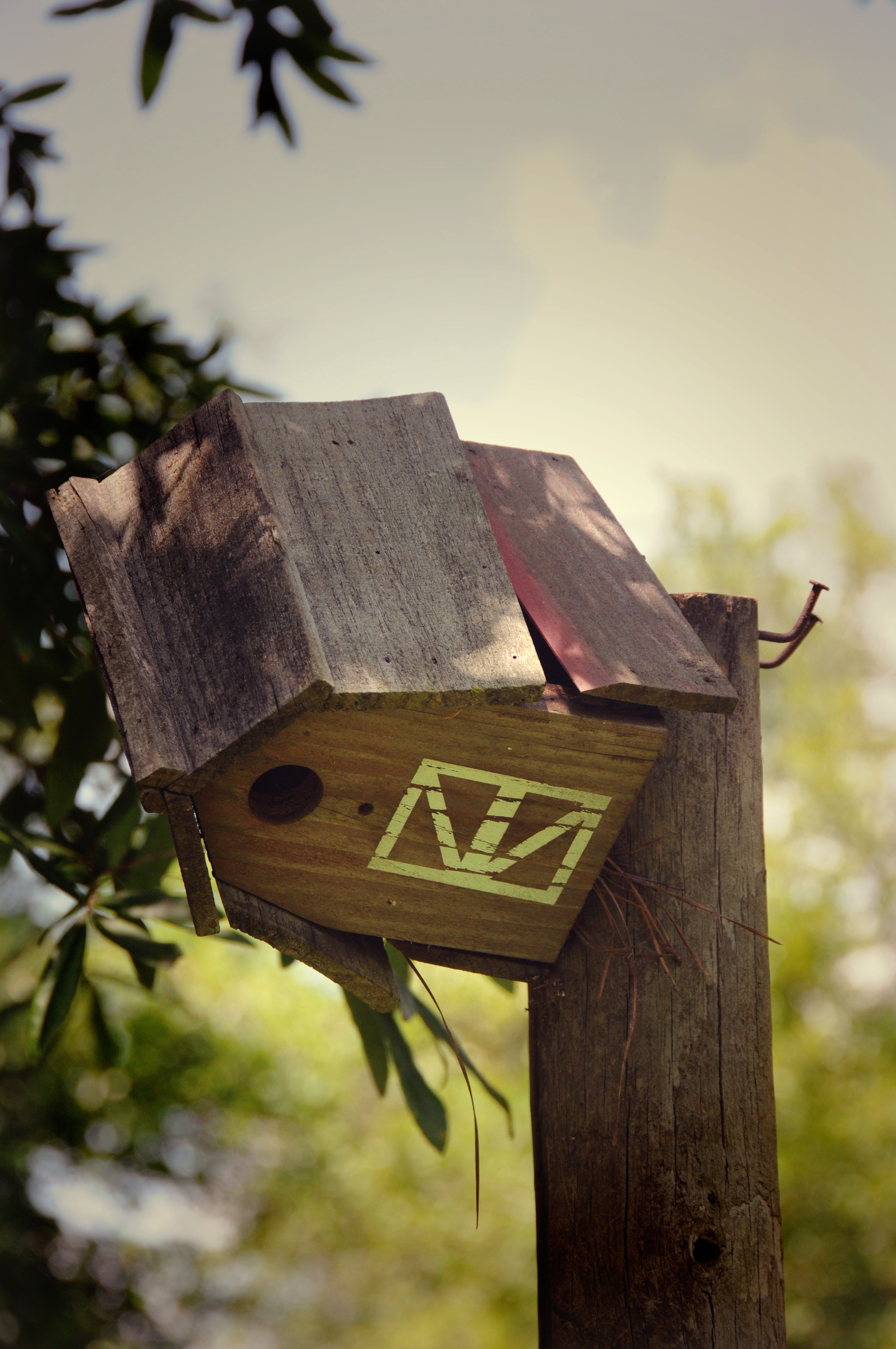 Bird house rsz