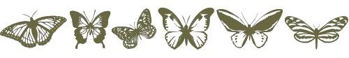 Butterflies and Butterflips