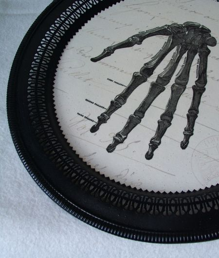Closeup Hand Tray