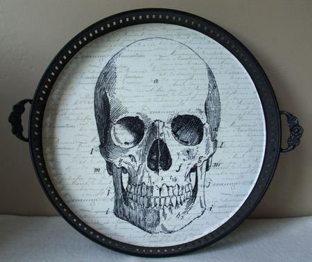 Skeleton Tray Closeup