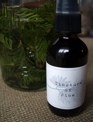 Tincture in bottle
