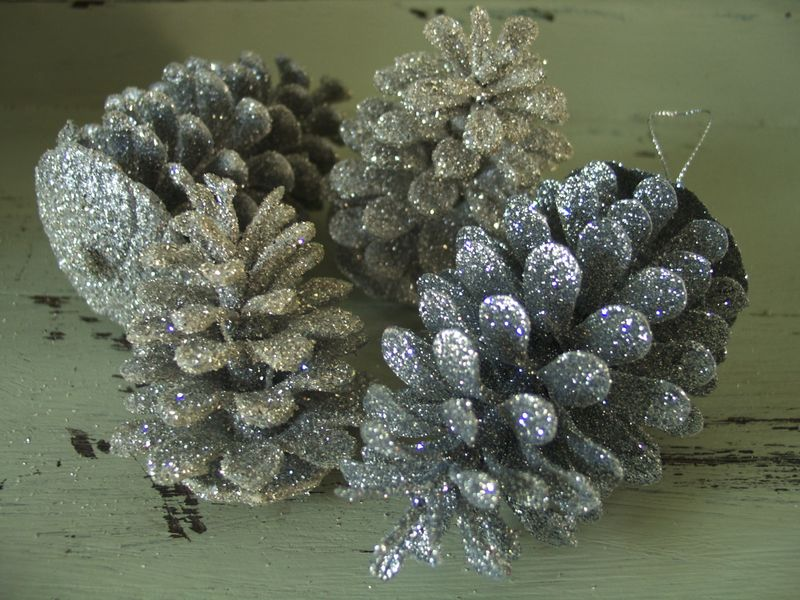 Pinecone Detail
