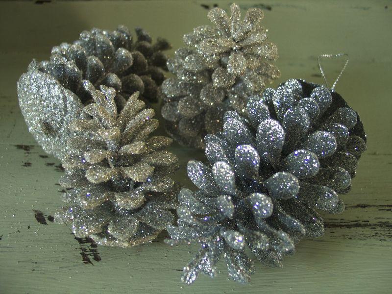 Pinecone Detail