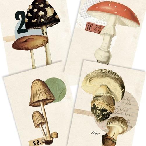 Fungus Set Tabitha Emma