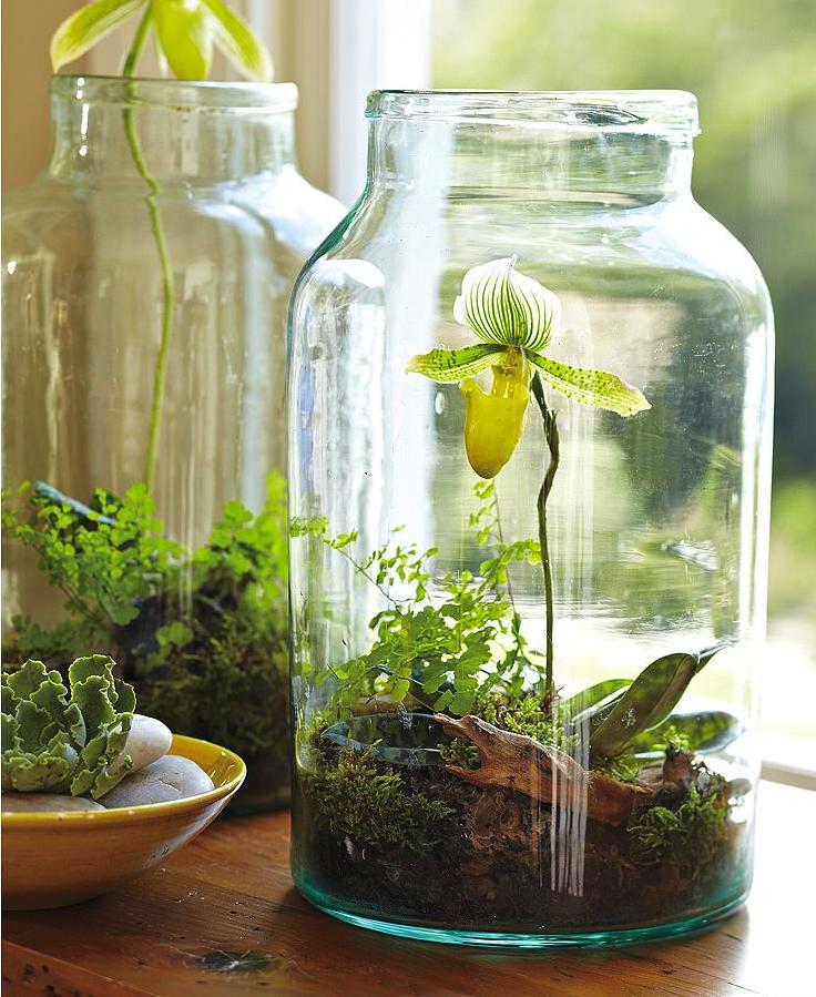 Pickling jar
