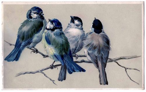 Birdsonbranch-graphicsfairy006a