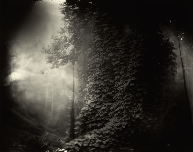 Sally_Mann_Georgia_03