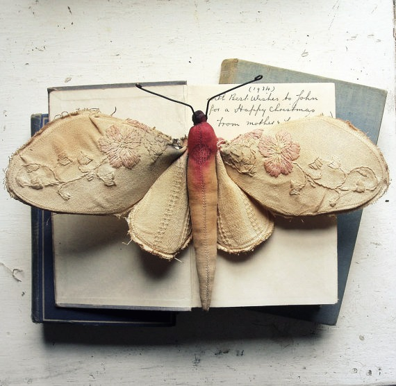 Mister Finch Pink Flower Moth