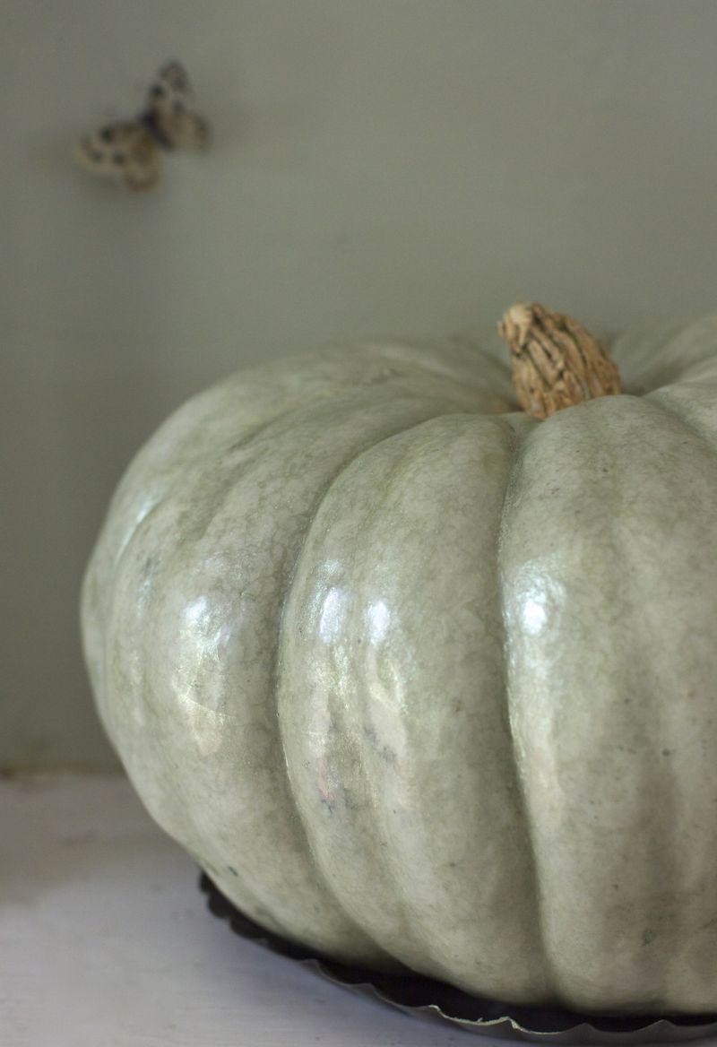 Luster dust pumpkins