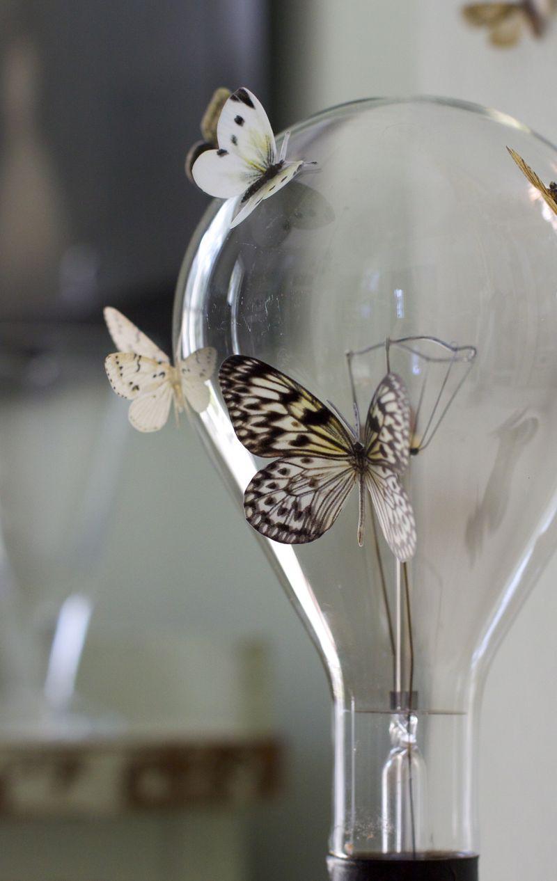 Vellum moths on industrial bulb