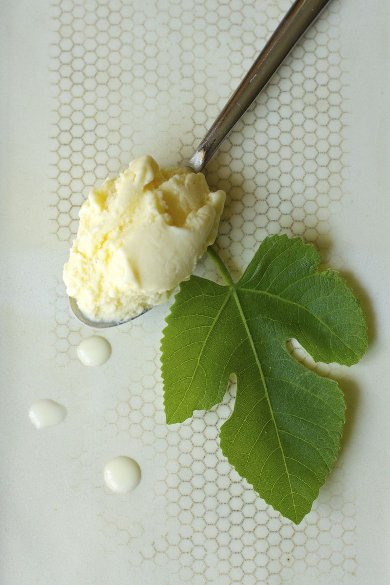 Toasted Fig Leaf Ice Cream