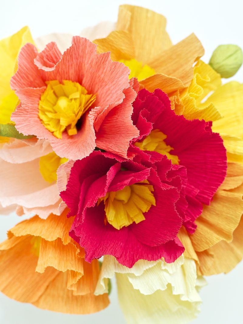 May Flowers Crepe Paper Poppies 10 Urban Comfort