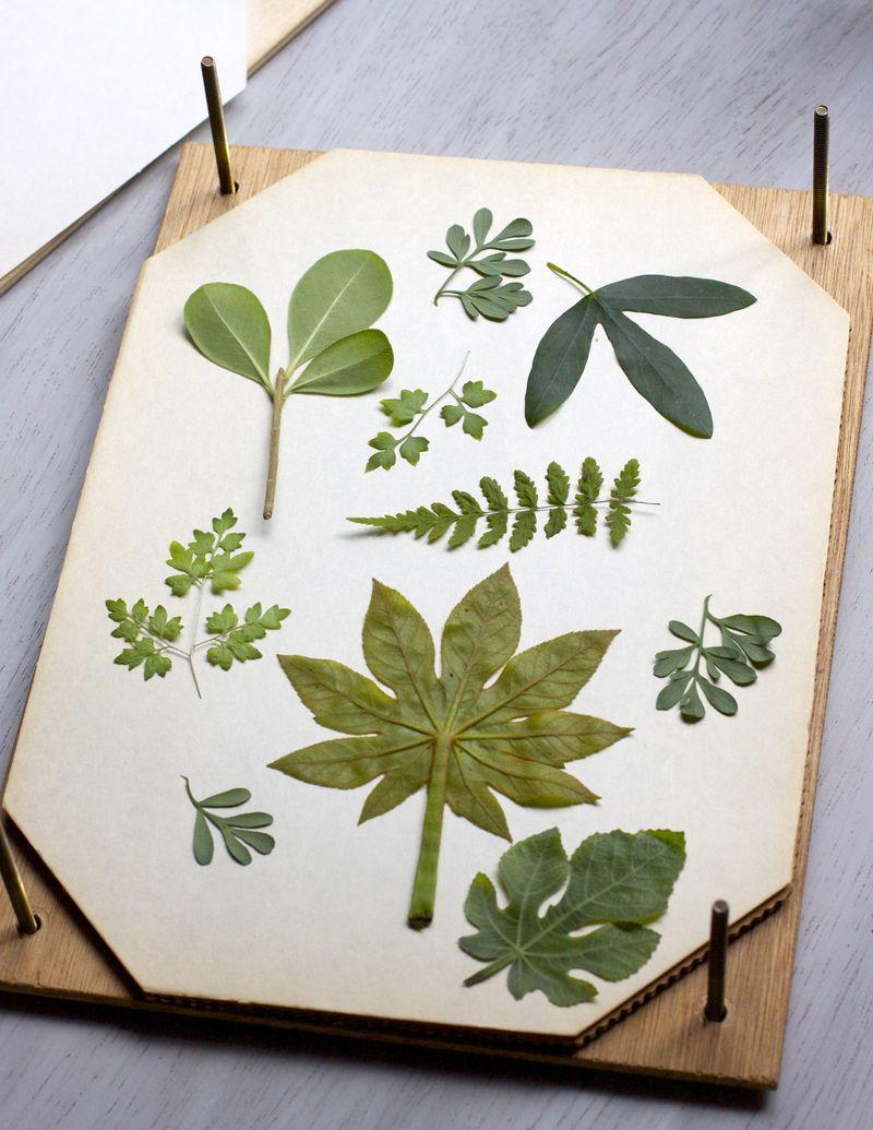 Botanical Pillow Step 1