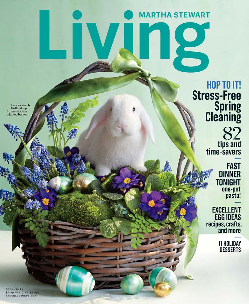 MSL April 2014 Cover