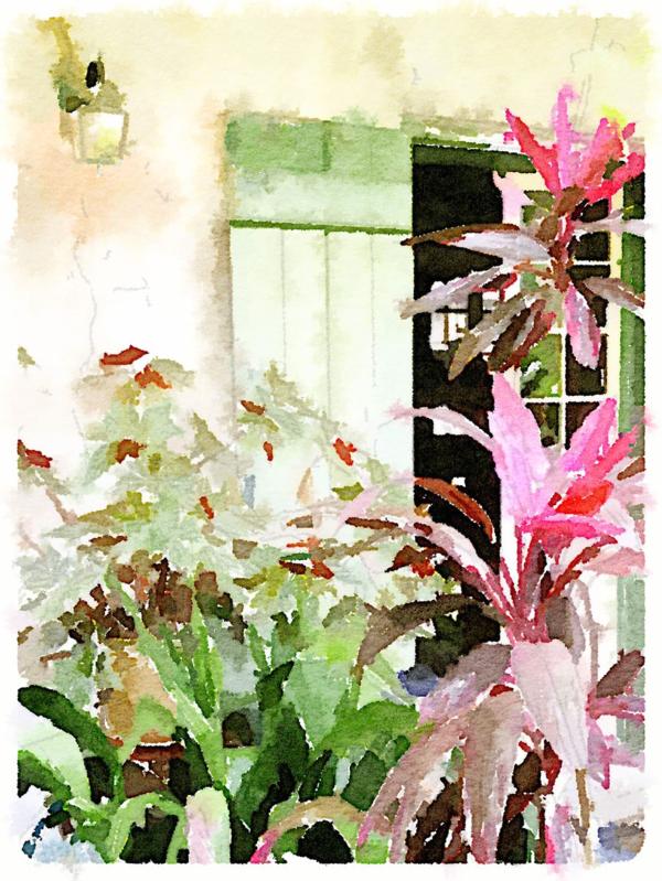 French Quarter Courtyard | Urban Comfort