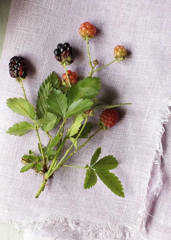 Blackberry Dyed Linen | Urban Comfort