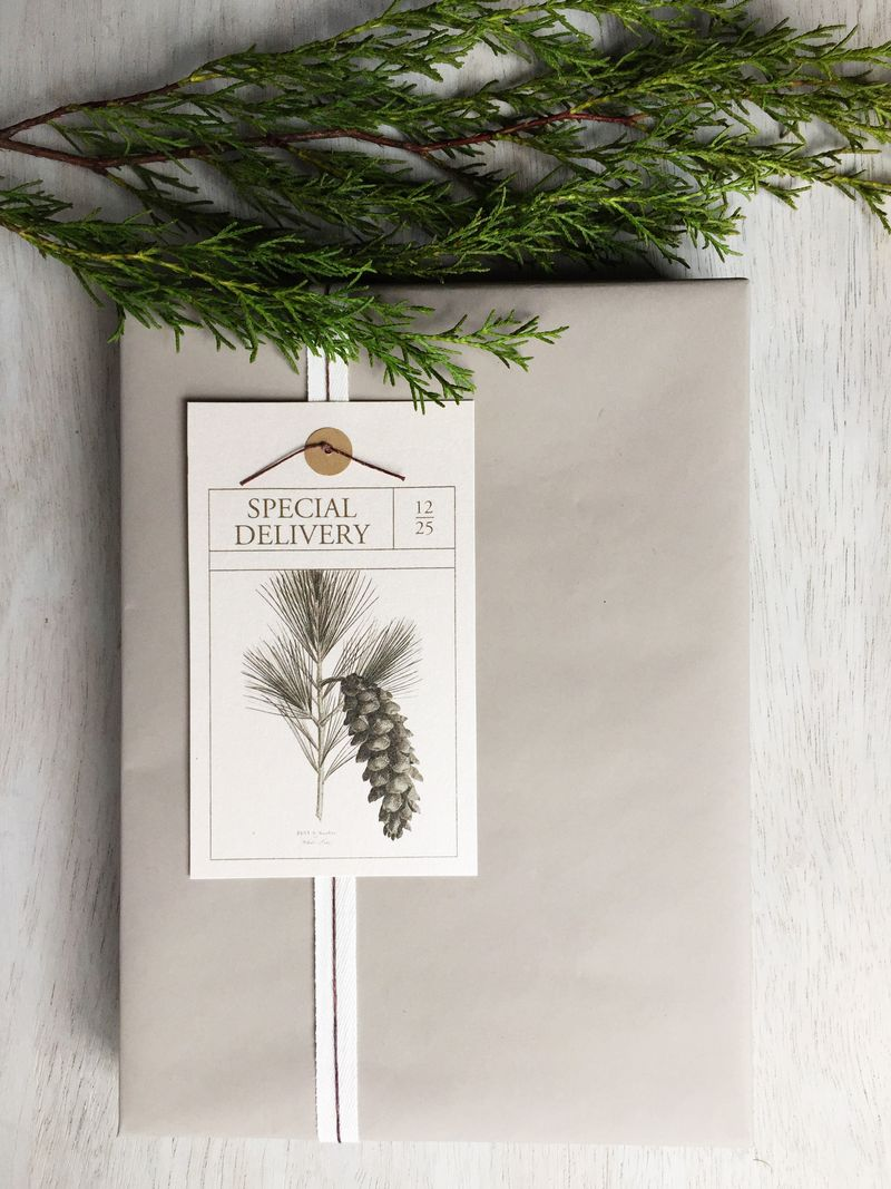 Special Delivery Gift Tag